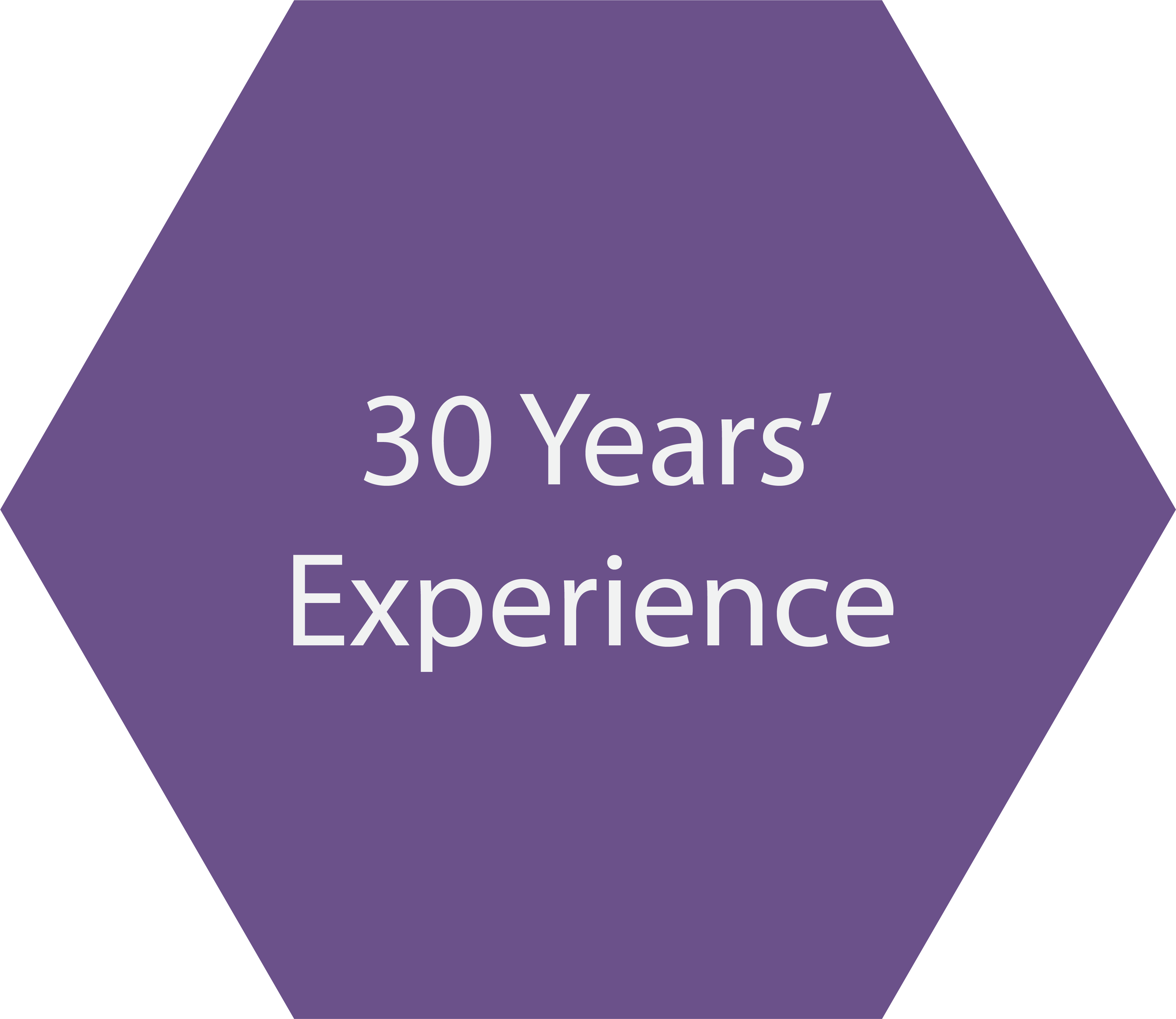 30 Years of Experience in Project Management